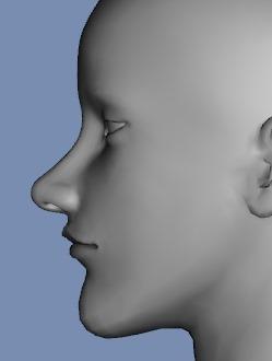 130815_D 天川和香 Create3D 【Daz Studio4.6】ル・アを作る。顔のポリゴンを修正する。0176
