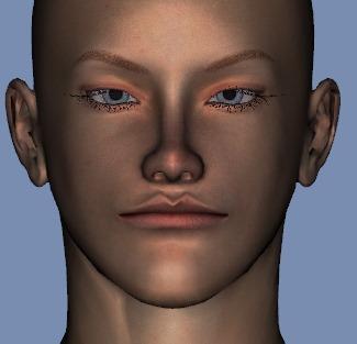 130815_D 天川和香 Create3D 【Daz Studio4.6】ル・アを作る。顔のポリゴンを修正する。0180