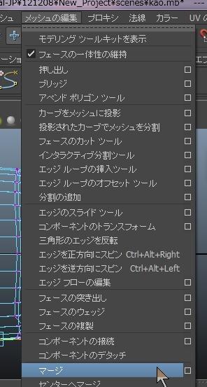 20131211_D 天川和香 Create3D4498